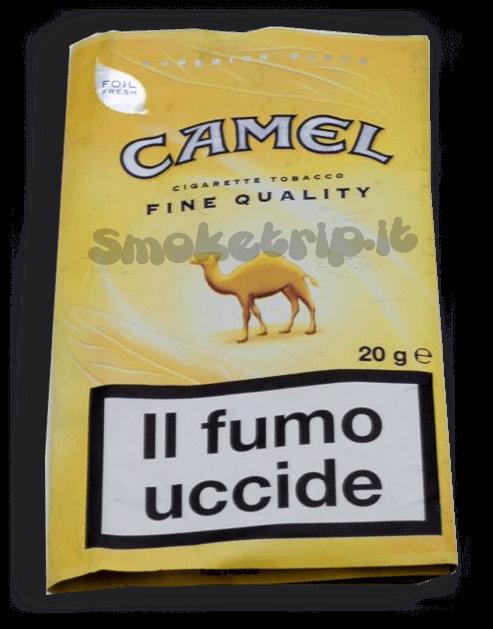 Tabacco camel Giallo