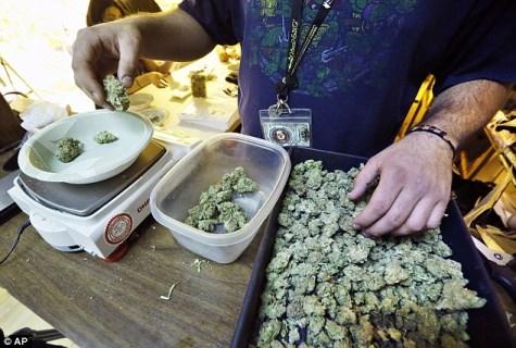 marijuana prezzi