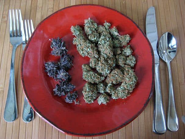 mangiare marijuana effetti