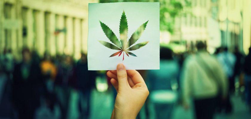 cannabis varianti classifica