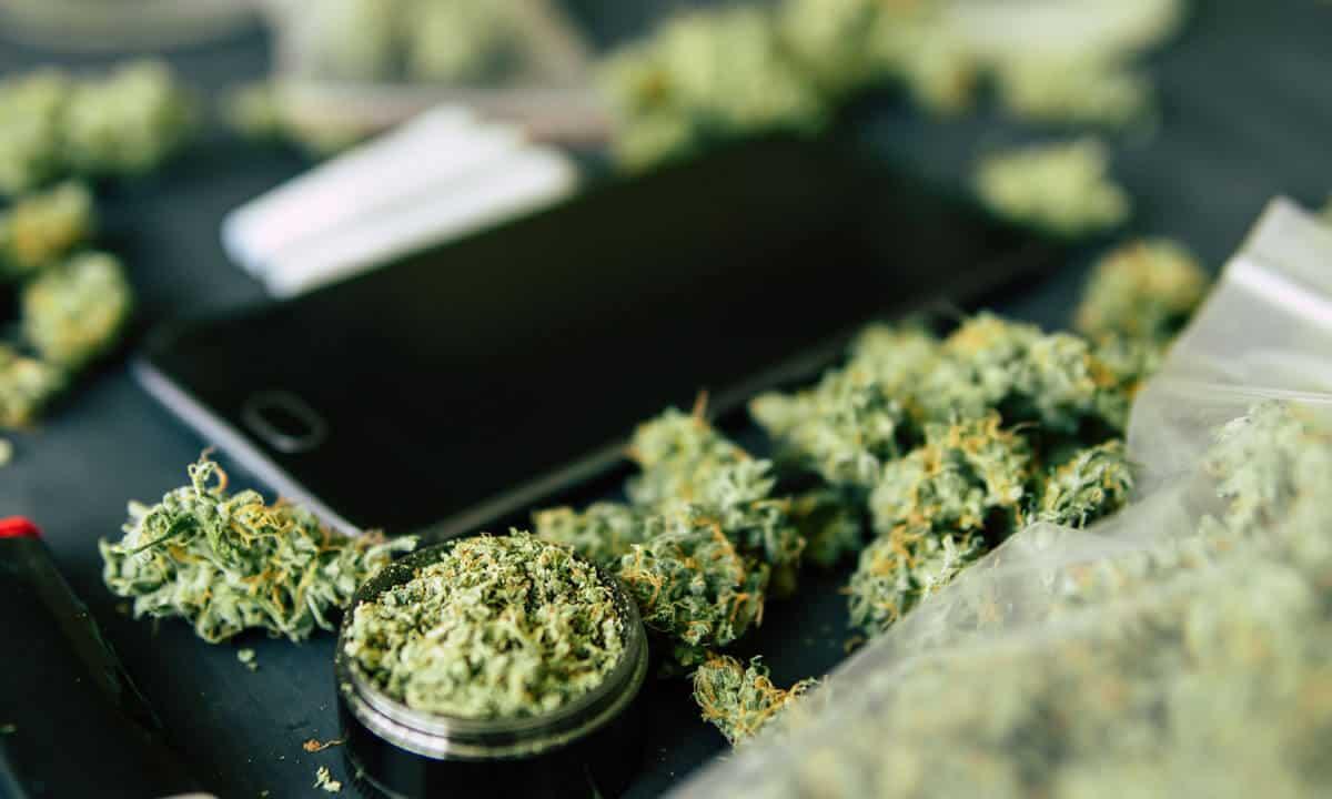 cannabis app migliori per smartphone