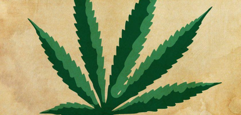 cannabis light governo
