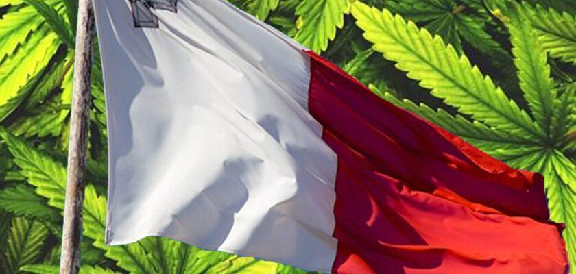 malta cannabis bandiera